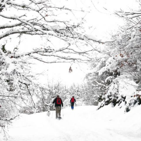 snowshoeing in zagori after a strong snowfall