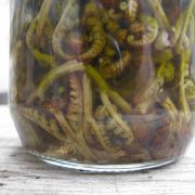 fermented fern zagori greece