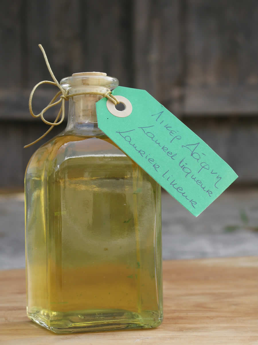 laurel licquer, zagorohoria, greece