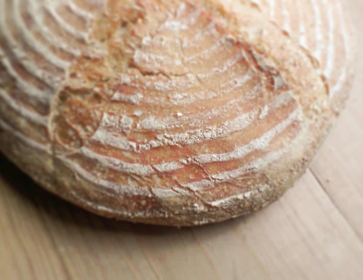 today's sourdough bread