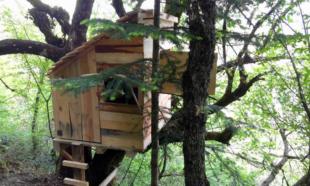 a tree house in Zagori
